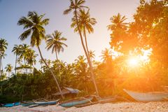 Untouched tropical beach with palms and fishing boats Royalty Free Stock Image