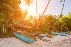 Untouched tropical beach with palms and fishing boats Royalty Free Stock Photo