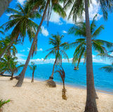 Untouched tropical beach Stock Photo