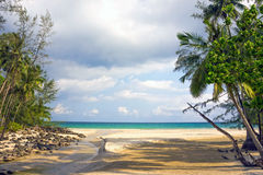 Untouched tropical beach in Thailand Royalty Free Stock Photos