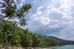 Untouched tropical beach in Thailand. Cloudy sky Royalty Free Stock Photos