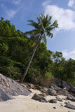 Untouched tropical beach in Thailand. Samui, Taling Ngam beach Royalty Free Stock Photography