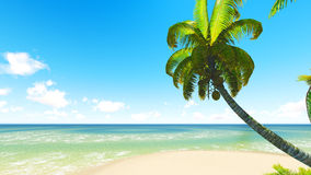 Untouched tropical sand beach Royalty Free Stock Images