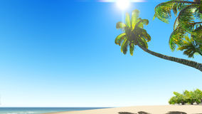 Untouched tropical sand beach Royalty Free Stock Photos