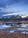 Untouched wetland at twilight with a dramatic sky, Nieuwkerk, Belgium Stock Photography