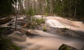 Untouched wild river in springtime photographed with long exposure. The location is a nature reserve in sweden Stock Images
