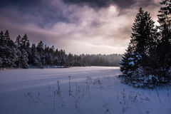 Untouched Winter Light Royalty Free Stock Image