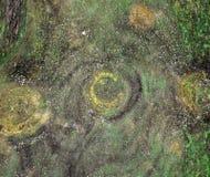 Unuque木绿色五颜六色的纹理 免版税库存照片