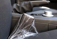 Unused seat belt royalty free stock photo