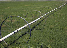 Unused Wheel Line. An old irrigation line stands unused in a vacant field Stock Images