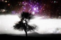 Unusual abstrac alien tree Royalty Free Stock Image