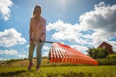 Unusual angle of woman raking leaves. Using rake. Person taking care of garden house yard grass. Agricultural, gardening equipment concept stock image