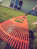 Unusual angle of woman raking leaves. Using rake. Person taking care of garden house yard grass. Agricultural, gardening equipment concept stock photography