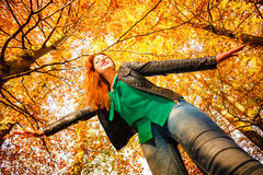Unusual angle of young woman in autumn park Stock Photography