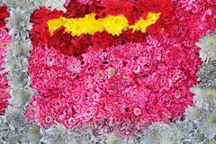 Unusual Beautiful tender colorful flowers background Stock Images