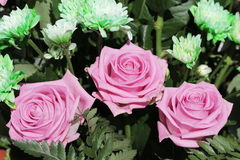 Unusual Beautiful tender pink and green flowers background Royalty Free Stock Photo