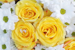 Unusual Beautiful tender white and yellow flowers background Royalty Free Stock Photo