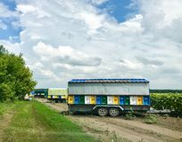 Unusual bee hives. Installed in a blue trailer and sunflower on a background stock photo