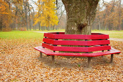 Unusual bench Royalty Free Stock Photo