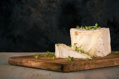 Unusual Camembert cheese with cube shape and cress. Horizontal photo with unusual camembert. Cheese with cube shape with cress on vintage chopping board with cut Stock Photos
