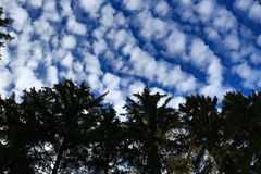 Unusual clouds, autumn scenery in the vicinity of Zelezna Ruda, Czech republic Royalty Free Stock Photography