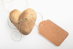 Unusual double heart-shaped fresh potato Stock Photography