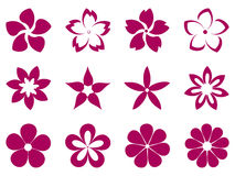Unusual flowers vector set Royalty Free Stock Photos