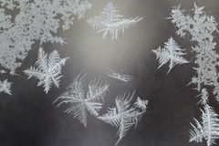 Unusual frost on a winter window Stock Images