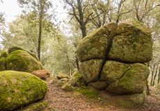 Unusual geologic rock formation forest view. An amazing geologic phenomenon of a huge rock cut into four pieces in cross shape at a catalan oak forest in Royalty Free Stock Images