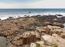 Unusual geology at Giants Causeway Ireland Royalty Free Stock Photo
