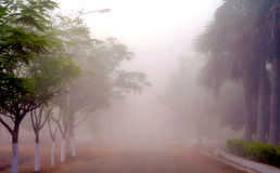 The unusual Mist. An unexpected foggy morning at SASTRA University, Thanjavur Stock Photos