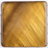 Unusual natural nacreous plate ocher brown Royalty Free Stock Images