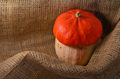 Unusual orange hat pumpkin Royalty Free Stock Photo