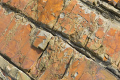 Unusual rock patterns found in rocks at Sandymouth bay North Cornwall uk Stock Photography