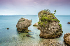 Unusual rocks with birds Stock Photography