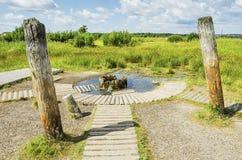Unusual rural landscape Royalty Free Stock Image