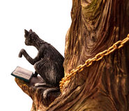 Unusual smart black cat reading a book, sitting in a tree. Isola Royalty Free Stock Photo