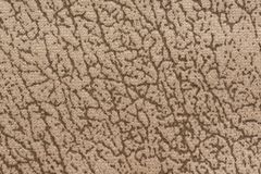 Unusual textile background with mottled surface on light beige colors. High resolution photo royalty free stock photos