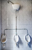 Unusual urinals Stock Photography