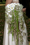Unusual wedding bouquet of daisies Stock Images