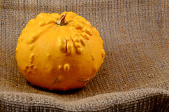 Unusual yellow pumpkin Stock Photos