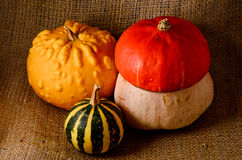 Unusual yellow pumpkin, orange hat pumpkin  and small watermelon Royalty Free Stock Images