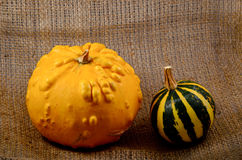 Unusual yellow pumpkin and small watermelon Royalty Free Stock Photo
