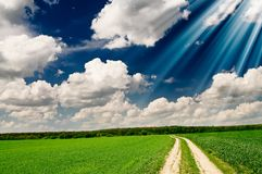 Unusually beams above spring field. Royalty Free Stock Photos