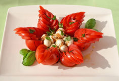 Unusually styled caprese salad Stock Image