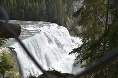 Unveröffentlichter Wasserfall Lizenzfreie Stockbilder