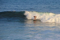 Unvergleichlicher auf dem Brett stehender und surfender Boogieinternatsschüler, Strand EL Zonte, El Salvador Stockfoto