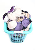 Unwashed cloth in basket Royalty Free Stock Image