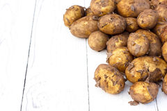 Unwashed new potatoes on white rustic wood. Space for text. Stock Photos