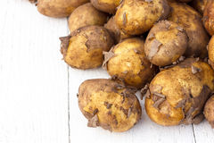 Unwashed new potatoes on white rustic wood. Space for text. Royalty Free Stock Photo